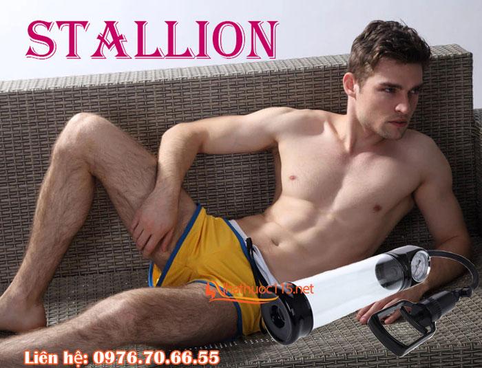 stallion-6