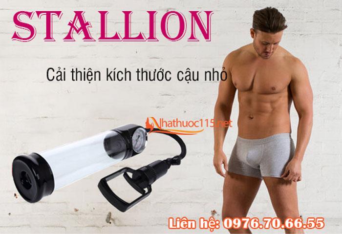 stallion-7
